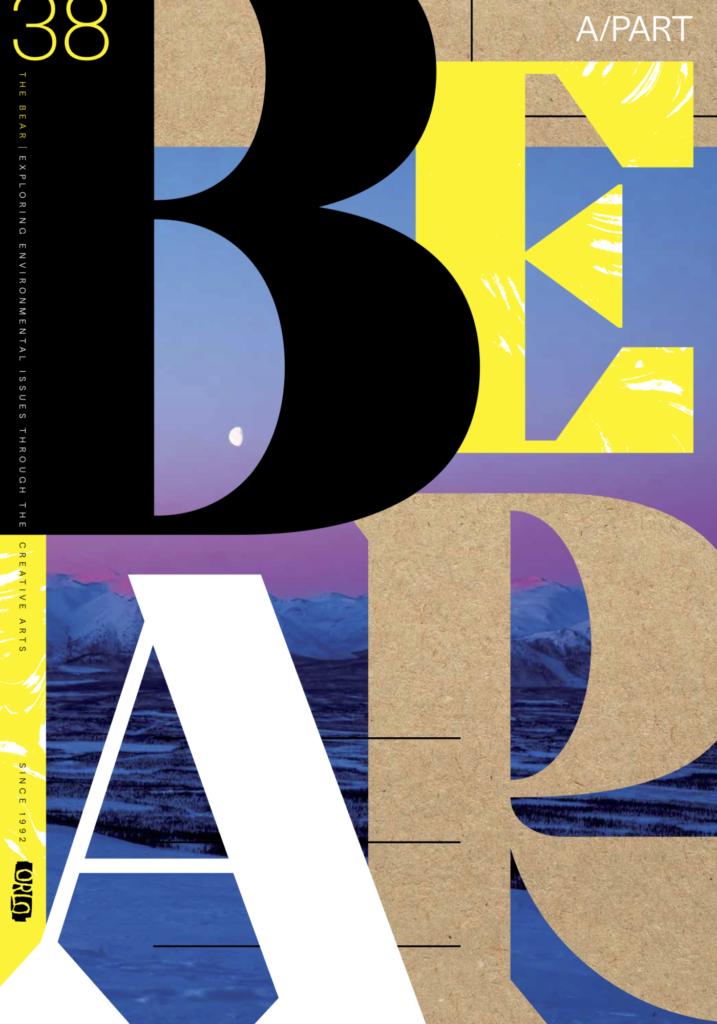 Cover of #38
